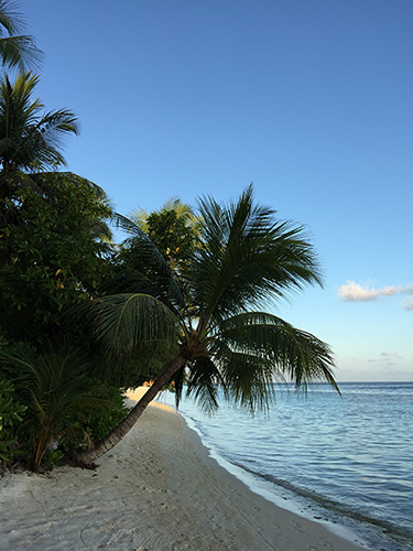 景観が良いビーチ